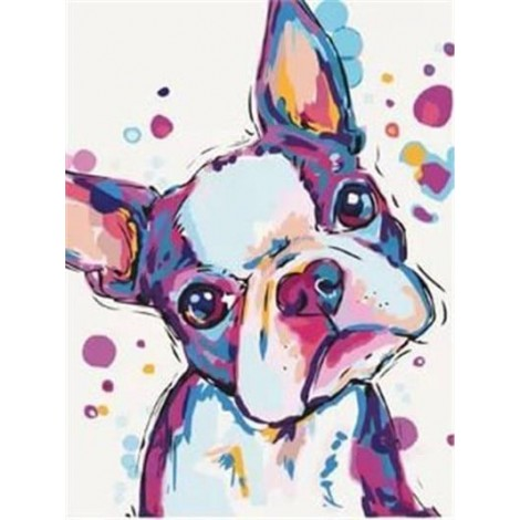 Colourful frenchie with heart nose
